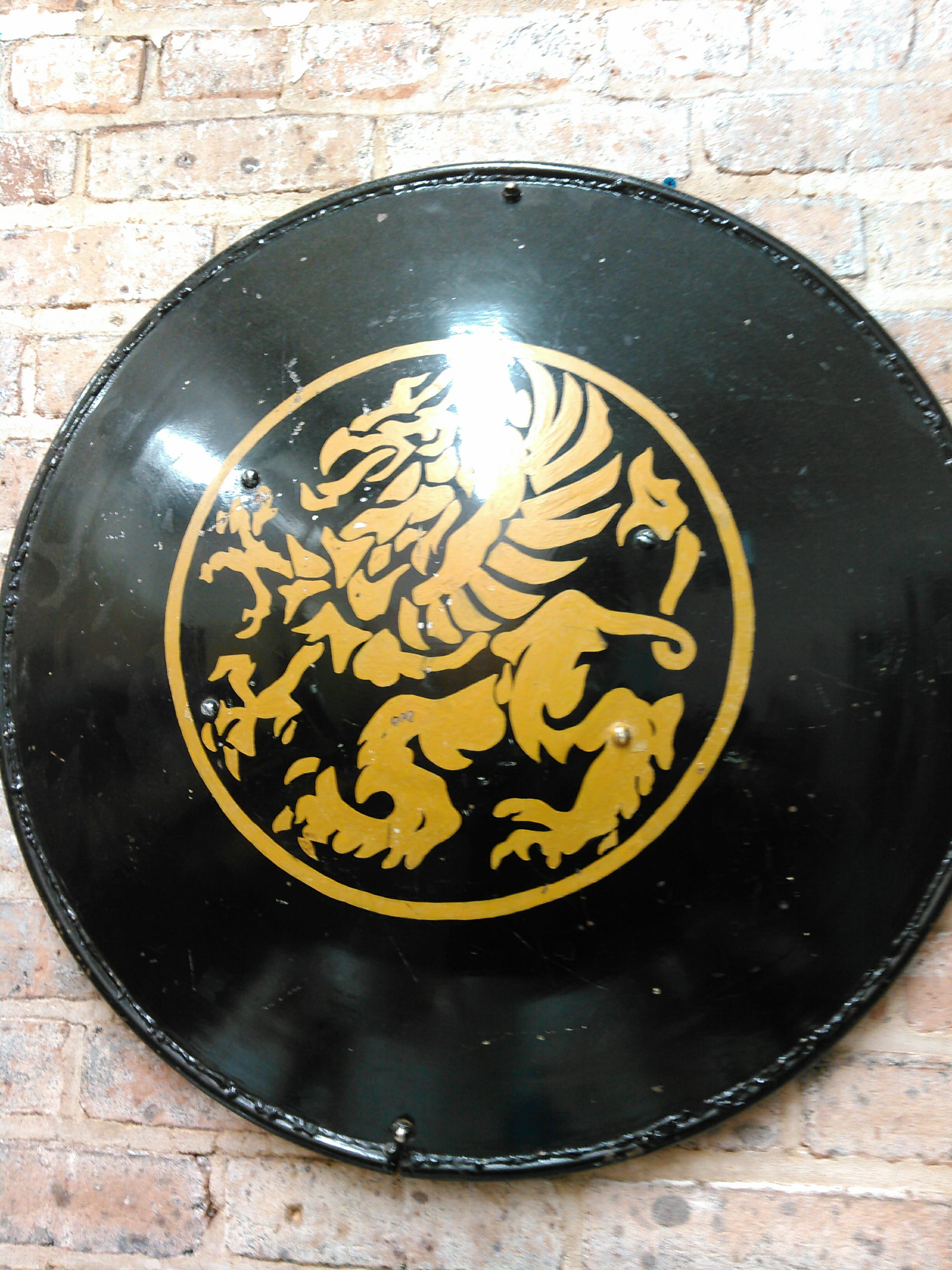 photograph of Gordon Rede's round shield